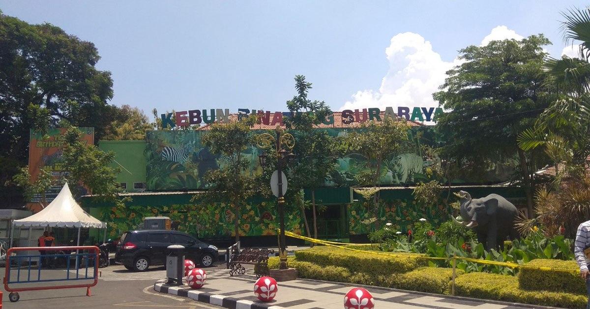 Wisata Kebun Binatang Surabaya